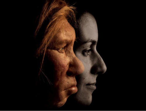 What Are Your Ancestral Genes Telling You?